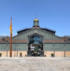 Mercat del Born, Barcelona: Die Ausgrabungsfläche