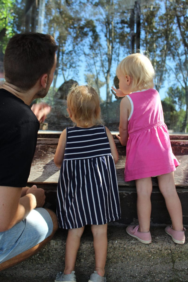 Zoo Barcelona mit meinen Kleinen