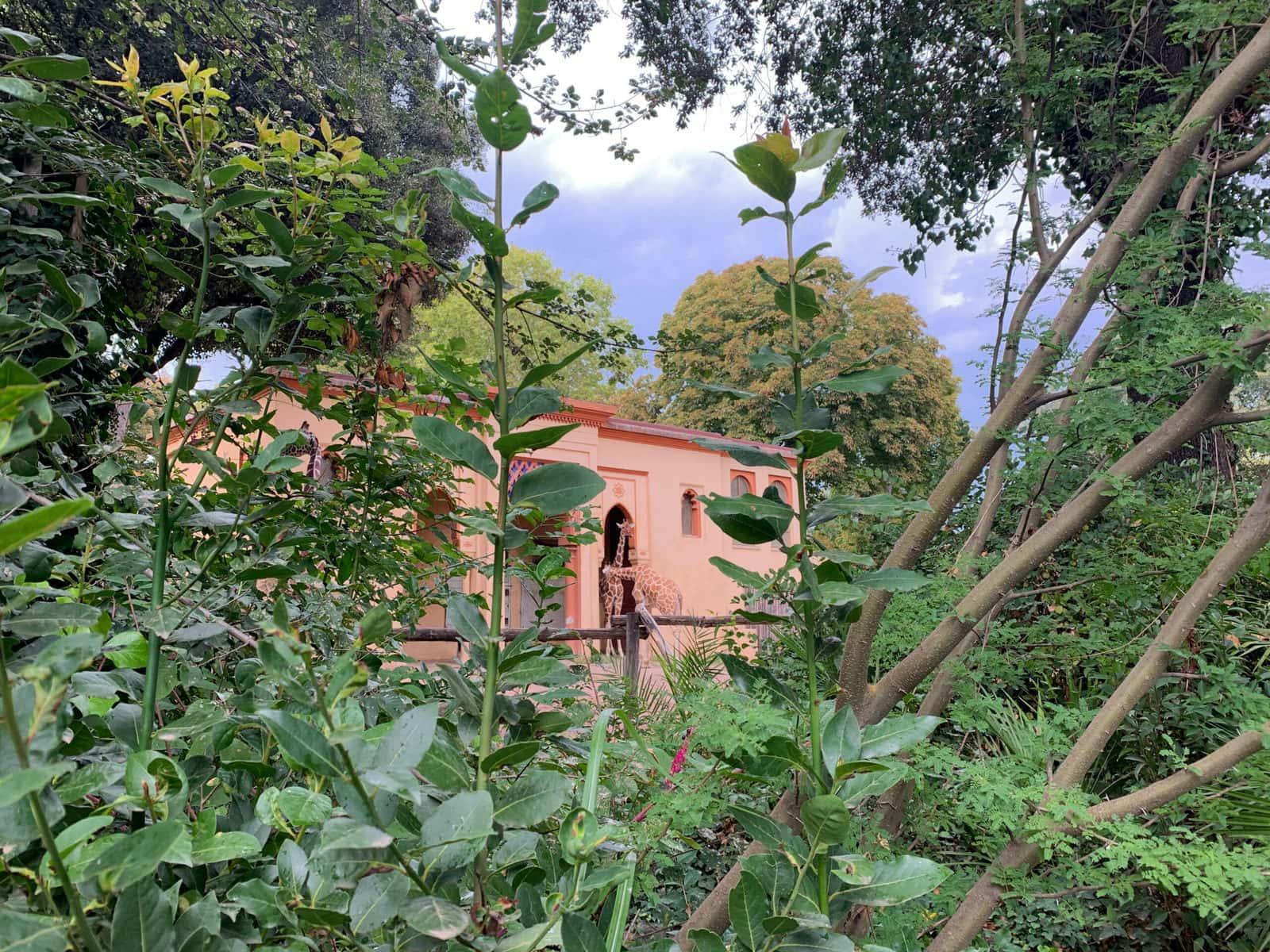 Zoo Bioparco Rom