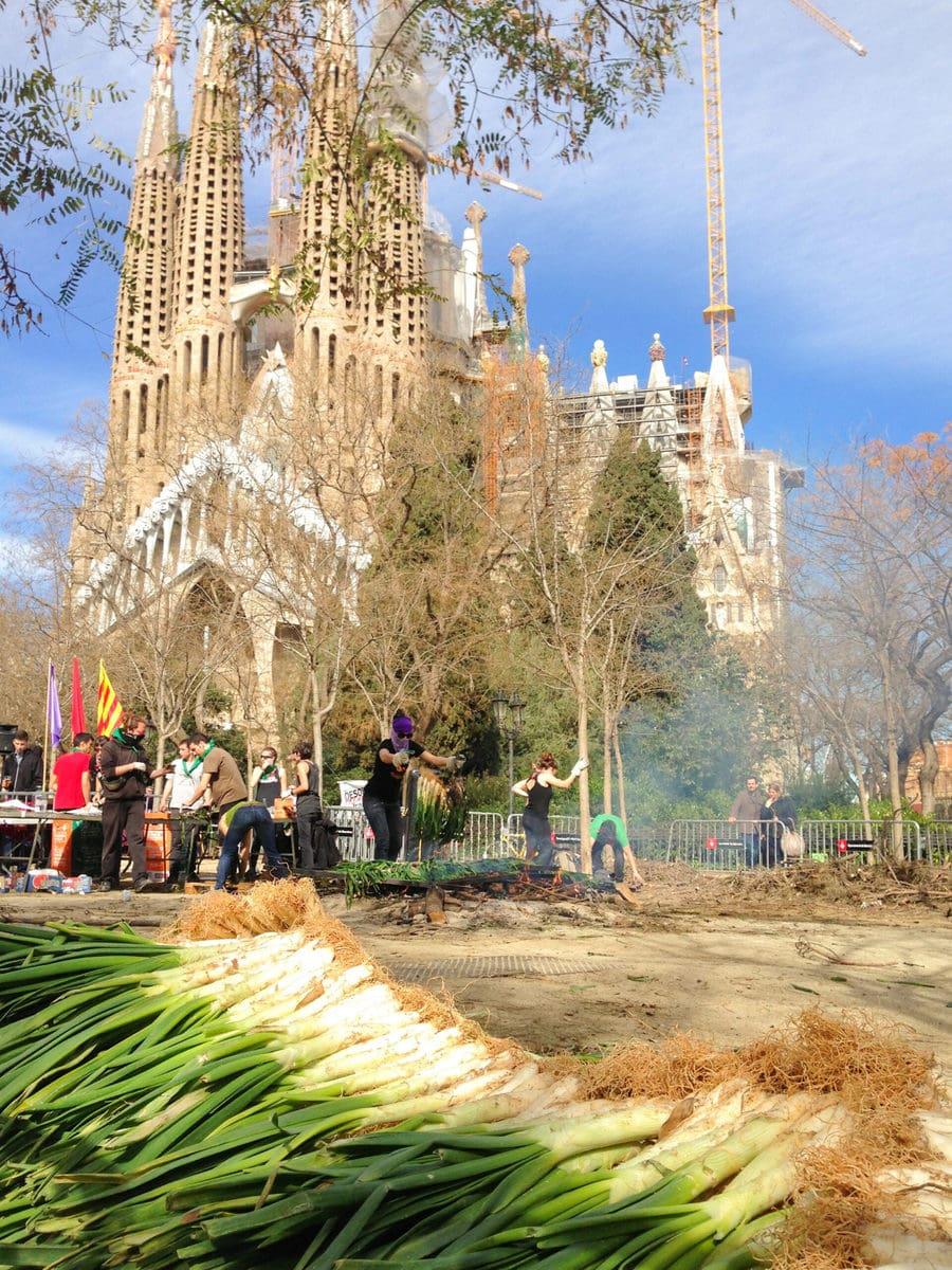 Calcots Barcelona